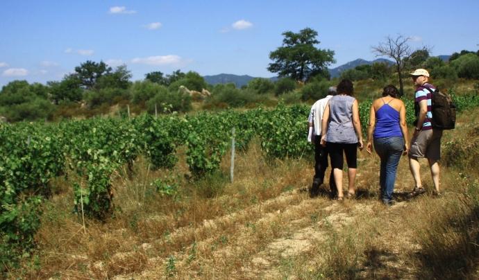 Una proposta d'ecoturisme a l'Empordà a la finca en custòdia de Can Torres, amb la Iaeden (imatge: arrelia.cat)