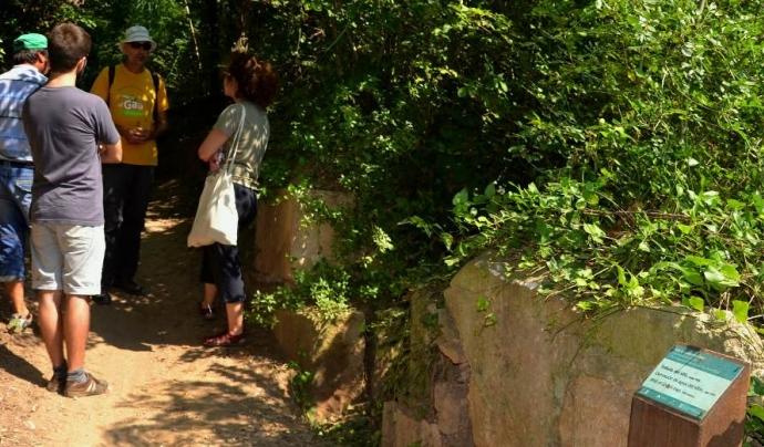 Es pot passar un dia amb l'Associació Mediambiental La Sínia a la desembocadura del riu Gaià (imatge: arrelia.cat)