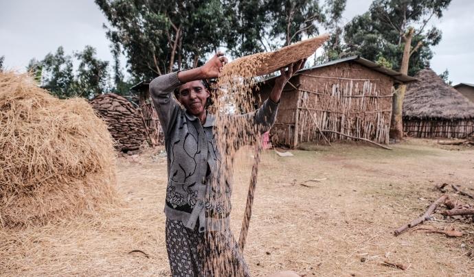 La FAO ha demanat ajuda internacional per resoldre la problemàtica. Font: Hugo Palotto