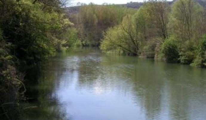 El Cerm té un conveni de custòdia fluvial a les riberes del Ter
