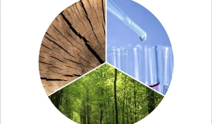 Durant l'acte de commemoració del Dia Mundial del Medi Ambient  al Palau de la Generalitat es lliuraran el premis Medi Ambient 2018.