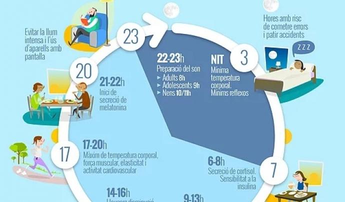 Les 24 hores del dia segons la Iniciativa per a la Reforma Horària.