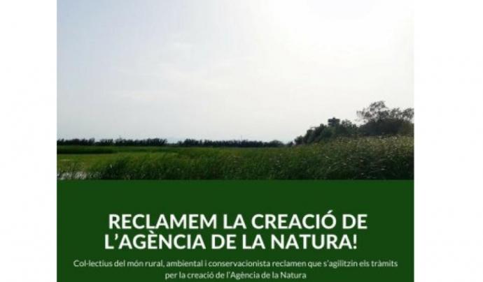 L'Agència de la Natura ha de fer front a problemes històrics de la gestió del patrimoni natural de Catalunya