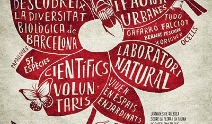 Enguany se celebra la novena edició del Bioblitz a la ciutat de Barcelona