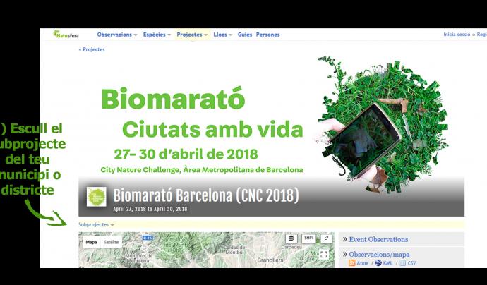 Barcelona accepta el repte de la Nature City Challenge amb la Biomarató