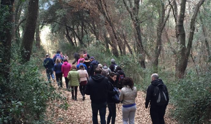 L'itinerari pel bosc de Santiga marca l'inici de l'educació ambiental a Catalunya   Font: Ajuntament de Barberà del Vallès
