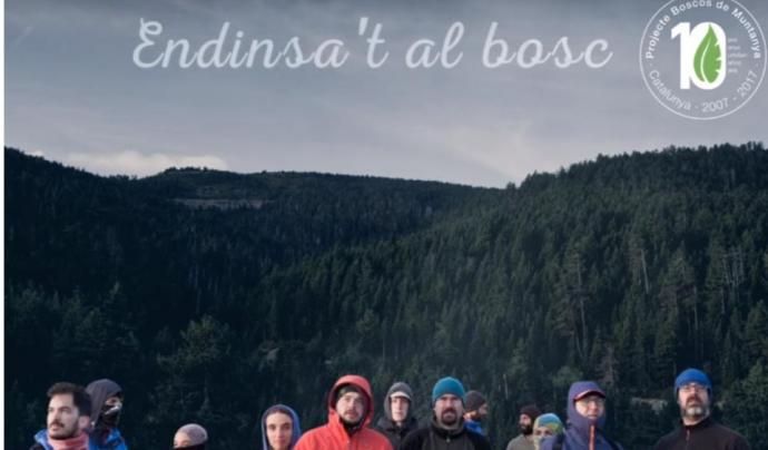 L'entitat considera que la millor manera de transmetre el missatge de la conservació dels boscos és endinsar les persones al bosc Font: Associació Boscos de Muntanya