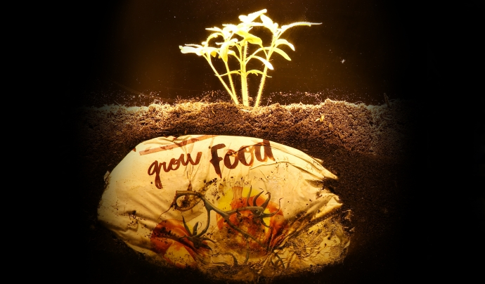 Bossa plantada sota terra. Font: FEEDitBAG