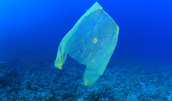 Bossa de plàstic al mar. Font: Wikimedia