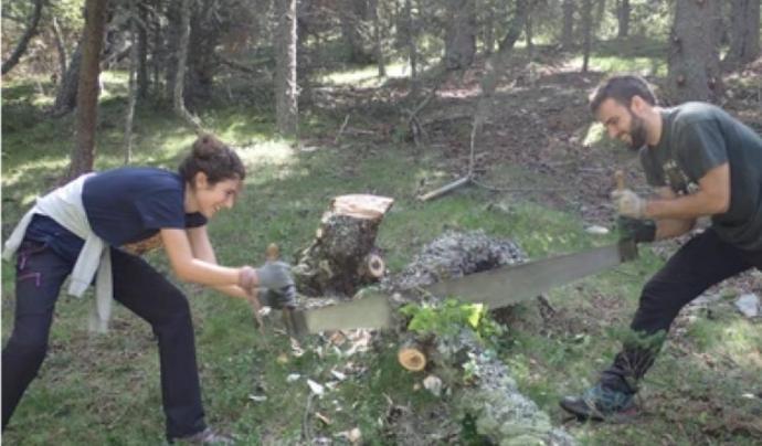 L'associació Boscos de Muntanya organitza estades per a persones adultes als boscos del Pirineu durant tot l'estiu Font: Associació Boscos de Muntanya