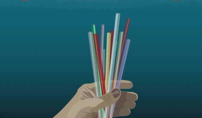 El cicle ofereix curtmetratges de qualitat cinematogràfica, com Straws