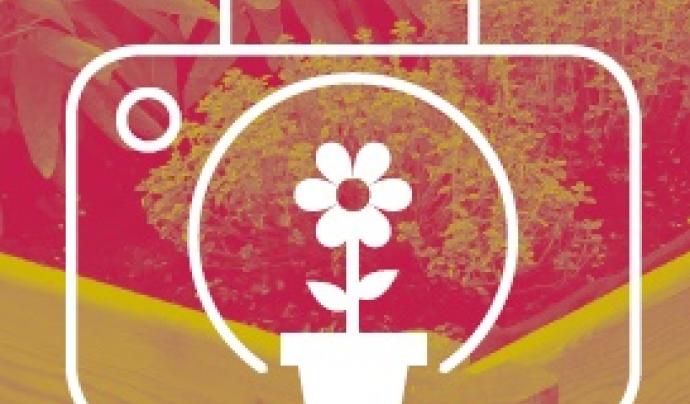 """El concurs de fotogràfia de Cornella """"La Natura a casa"""" vol mostrar qualsevol aspecte natural present al municipi"""
