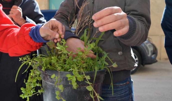 L'Associació Corremarges es dedica a l'aprofitament dels recursos naturals, en particular les plantes espontànies comestibles. Font: Corremarges