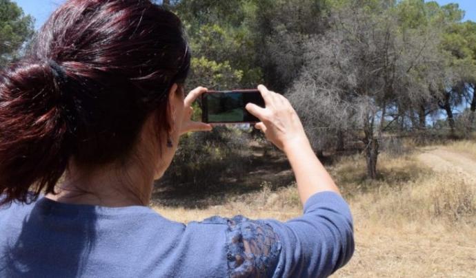 Alerta Forestal és un projecte de ciència ciutadana promogut pel CREAF al que participen entitats ambientals Font: Alerrta Forestal