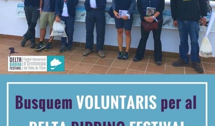 Es pot participar al Delta Birding Festival com a voluntaris o voluntàries