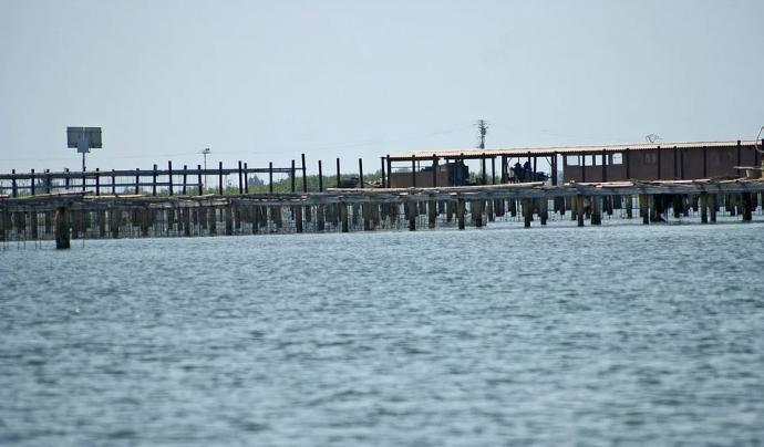 Cada any es perden vuit metres de franja litoral per l'augment del mar a causa del canvi climàtic.  Font: CC