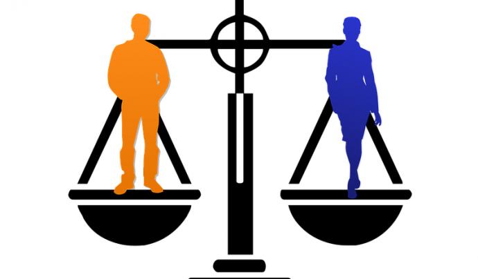 Igualtat de gènere Font: Artsybee a Pixabay