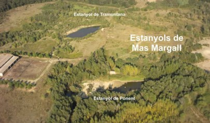 La Iaeden protegeix els Estanyols de Mas Margall, a l'Empordà,  amb la custòdia del territori