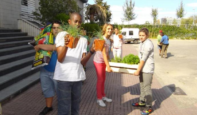 Alumnes d'ESO d'un institut de Girona treballant amb plantes aromàtiques per la protecció del seu hort ecològic educatiu