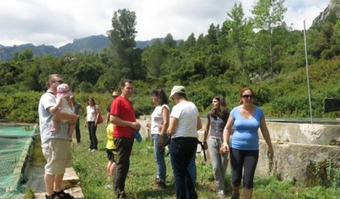 Un grup de voluntariat ambiental a la finca d'Aiguanatura Font: AiguaNatura