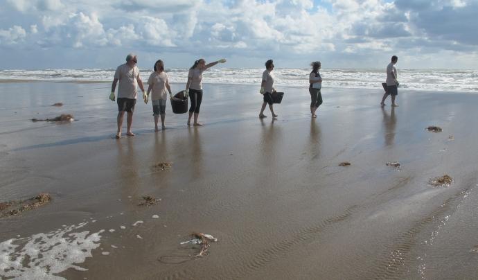 Jornada de voluntariat ambiental a les platges del Delta de l'Ebre Font: Graëllsia