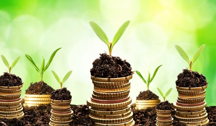 Monedes amb plantes