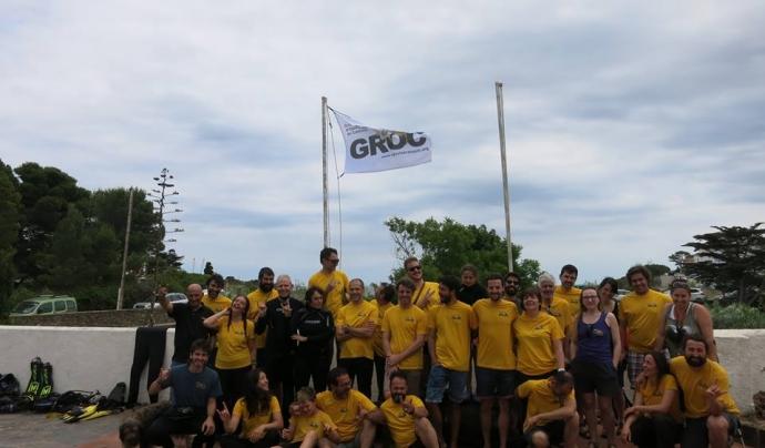 El grup de persones participants a una marató d'opistobranquis Font: GROC