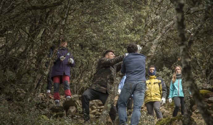 Projecte Boscos de Muntanya per a joves Font: Projecte Boscos de Muntanya per a joves