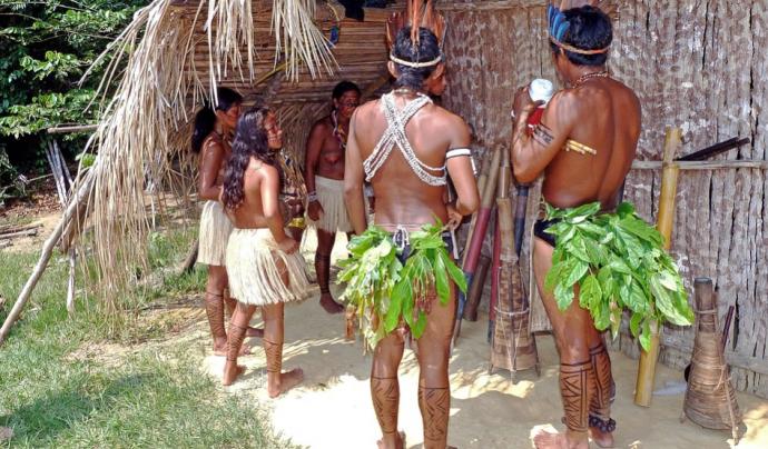 Els indígenes i els activistes acusen al govern del Brasil d'una resposta incompetent Font: CC