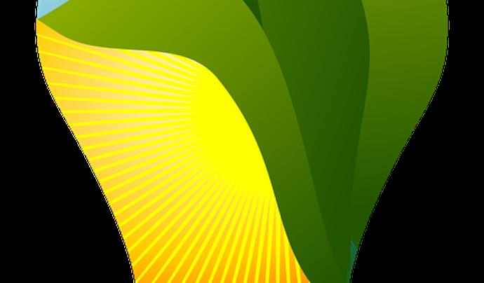 Sempre hi ha maneres de reduir el consum elèctric Font: aalmeidah a Pixabay