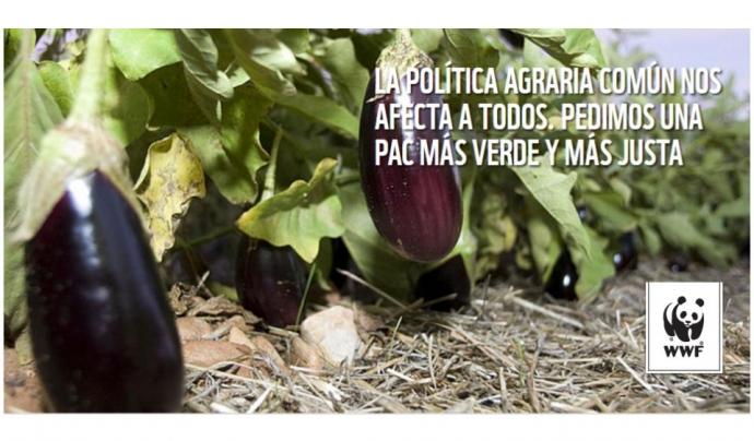 El model d'agricultura definit per la PAC impacta sobre l'alimentació, la salut i el mediambient. Font: WWF