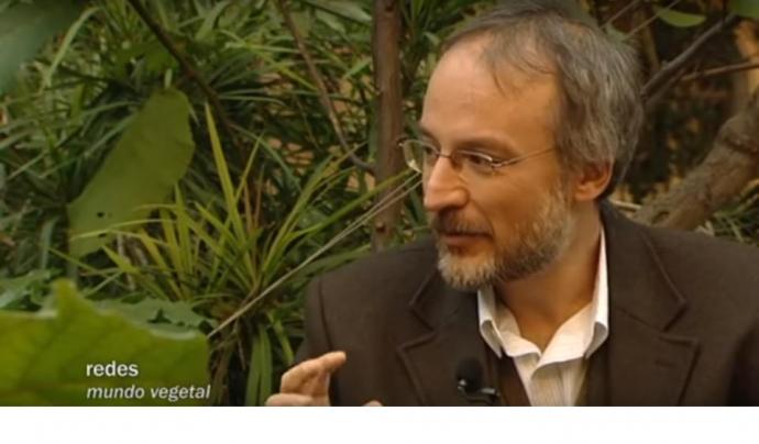 Stefano Mancuso durant una entrevista amb Eduard Punset al programa Redes Font: Redes