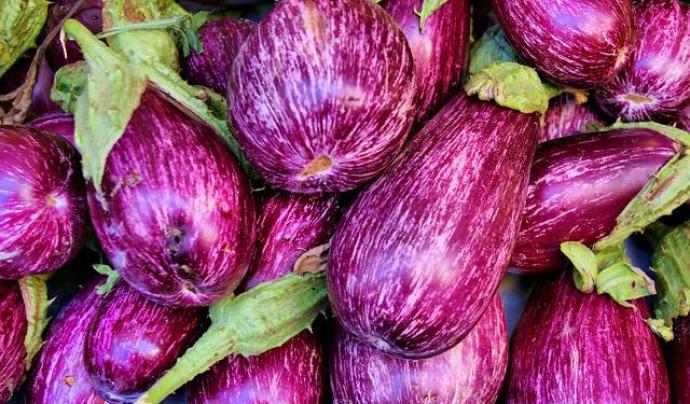 L'agroecologia i l'economia social i solidària comparteixen valors, i plantegen noves formes de produir aliments