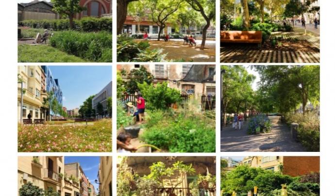 A través d'instagram i l'etiqueta #caminempelverd l'associació Som Natura recull de forma col·laborativa espais de natura a la vida urbana. Font: Associació Som Natura