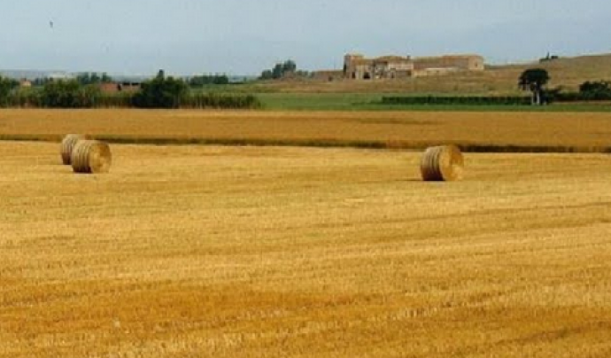 El projecte Paisatges Salvats Paisatges per salvar posa la mirada en els valors socials, culturals i ambientals de tots aquests entorns  Font: Associació de Naturalistes de Girona