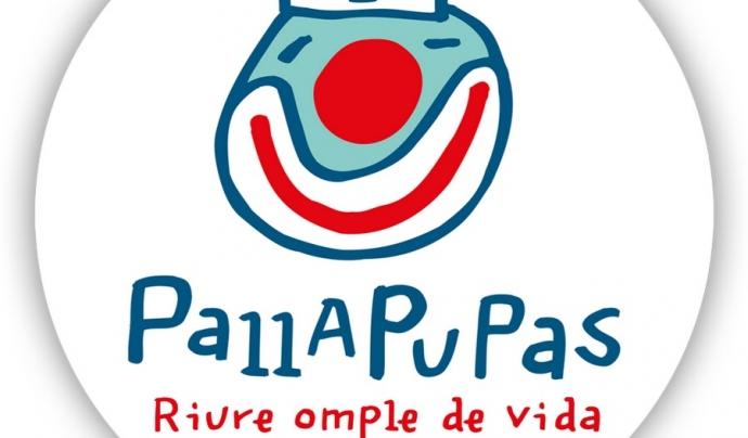 El nivell d'activitat de Pallapupas està actualment per sobre del d'abans de la crisi Font: Pallapupas