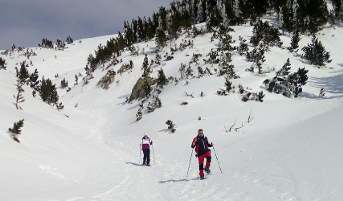 L'Associació CEA Alt-Ter proposa una sortida en raquetes per apreciar la natura de les valls pirineneques Font: Associació CEA Alt-Ter