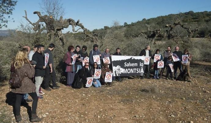 Entitats i ciutadania del Montsià es mobilitza per la defensa del paisatge centenari, i en algunes ocasions, mil·lenari. Font: Plataforma Salvem Lo Montsià