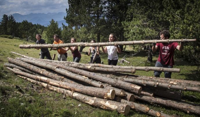 Boscos de Muntanya per a Joves Font: Boscos de Muntanya