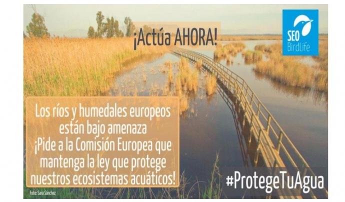 Protectwater és una campanya col·laborativa entre més d'un centenar d'entitats ambientals europees Font: SEO