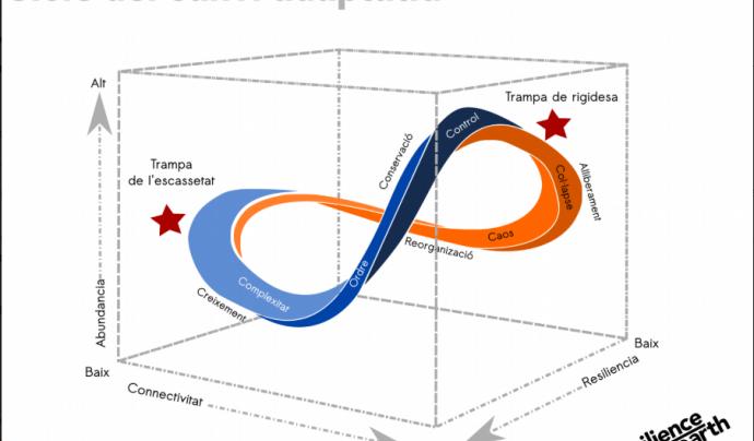 El gràfic recull les fases del cicle de la resiliència Font: Resiliènce Earth