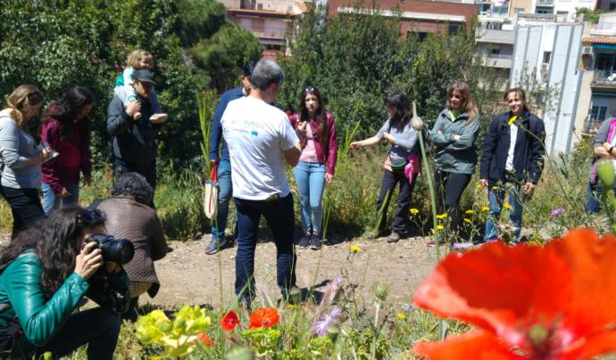 Voluntaris i voluntàries de l'Aula Ambiental de Bosc de Tutull a una sessió del projecte de seguiment febnològic RitmeNatura del CREAF Font: Ritme Natura