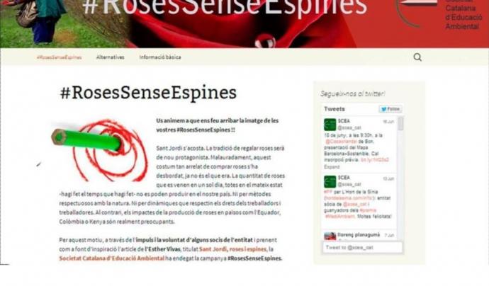 La campanya #RosesSenseEspines de la Societat Catalana d'Educació Ambiental vol donar visibilitat a la problemàtica i oferir alternatives a les persones que volen regalar una rosa per Sant Jordi Font: Roses Sense Espines