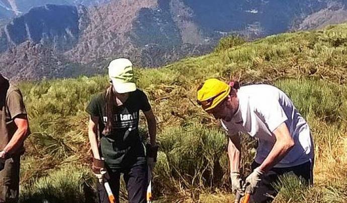 Voluntariat ambiental amb l'Associació Boscos de Muntanya per la Setmana de la Natura Font: Boscos de Muntanya