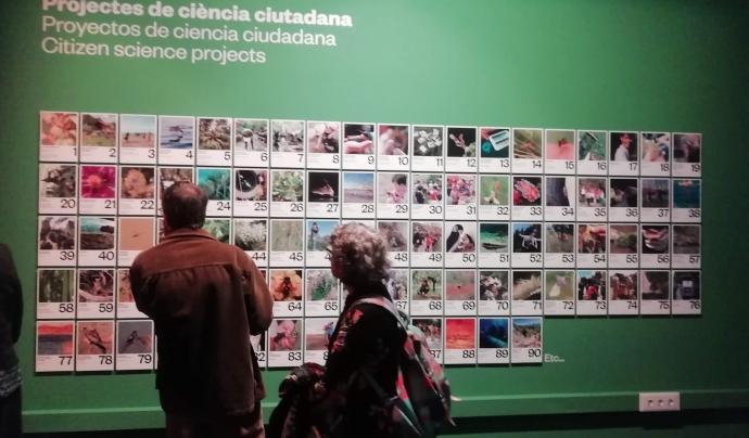 La mostra convida a la participació ciutadana en la conservació de la natura, per exemple, a través de la ciència ciutadana.