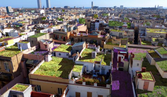 'Terrats verds' és una iniciativa innovadora als terrats de Barcelona per omplir-los d'horts urbans. Font: Barcelona Sostenible