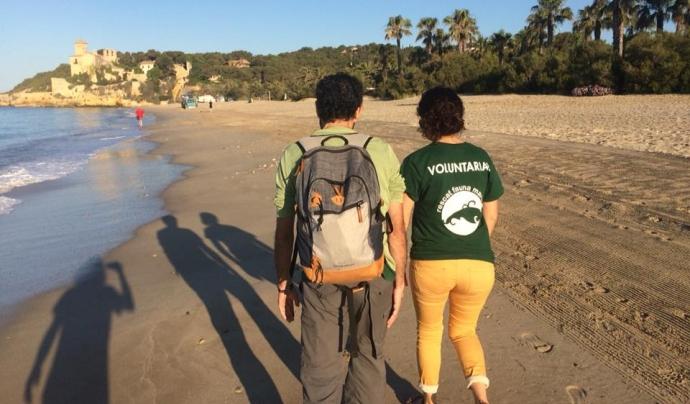 Crida de voluntariat ambiental pel seguiment de la tortuga babaua a les platges de Tarragona l'estiu de 2018 Font: Associació Mediambiental La Sínia