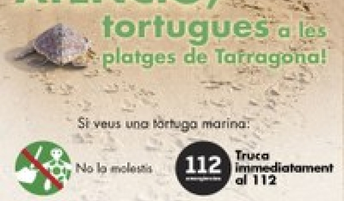Per formar part de la Xarxa de Voluntariat per la Tortuga cal contactar amb l'Ajuntament de Tarragona o amb les entitats ambientals  Font: Ajuntament de Tarragona