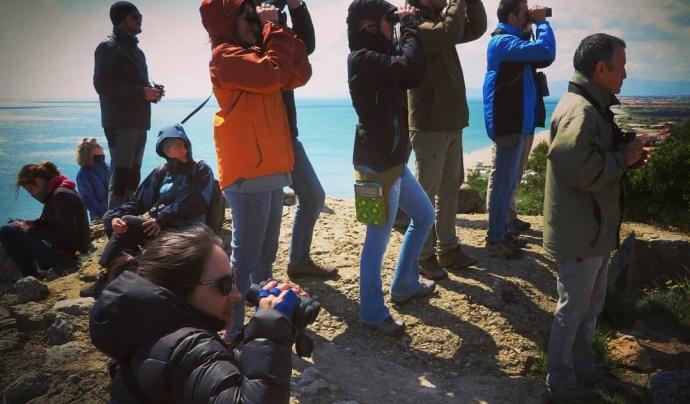El voluntariat ornitològic mobilitza cada any milers de persones voluntàries Font: Associació ICO