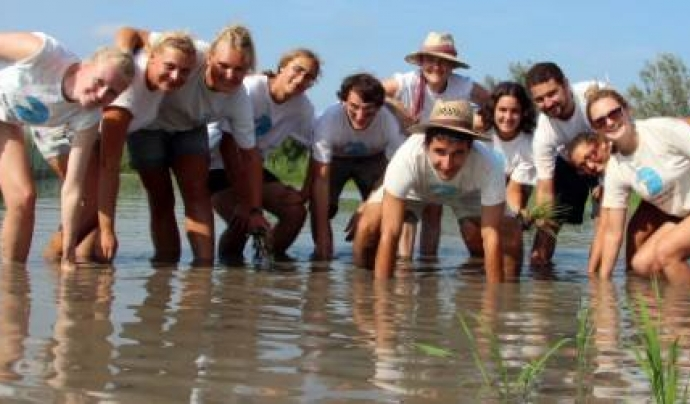 Voluntariat Ambiental a Riet Vell amb Seo Bird Life  Font: Riet Vell